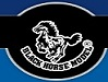 BlackHorse RC Models